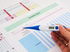 График базальной температуры при беременности